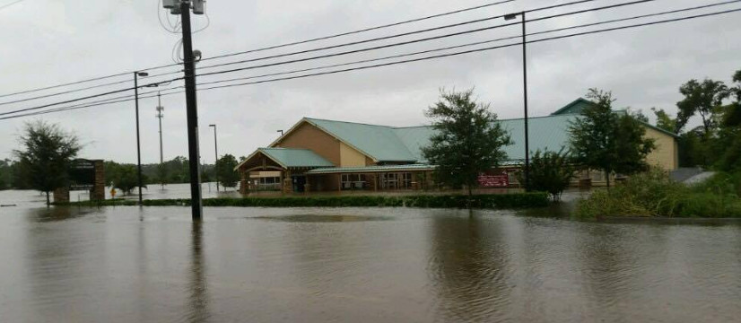 Stuebner Airlines Veterinary Hospital after Hurricane Flooding